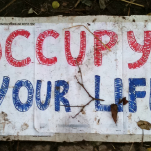 Occupy Your Life
