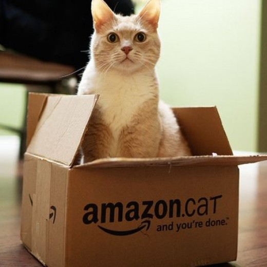 Like and Tag My Amazon Cat